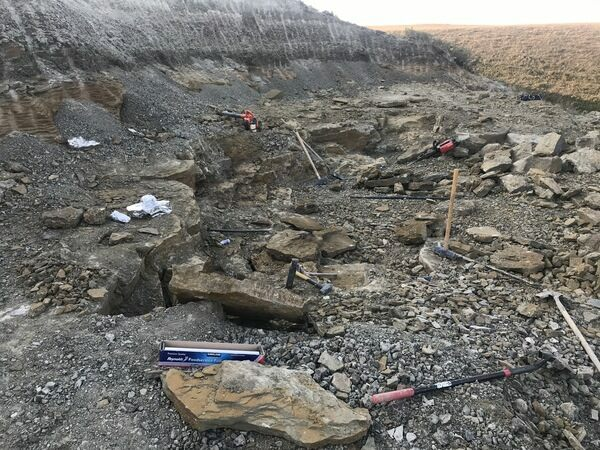 A view of the Two Medicine Formation quarry operated by Northwest Montana Fossils where much of our Two Medicine dinosaur material has been found.