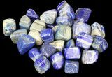 Bulk Polished Lapis Lazuli - 8oz. (~ 25pc.) - Photo 3