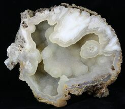 "7.8"" Agatized Fossil Coral With Druzy Quartz - Florida For Sale, #30701"
