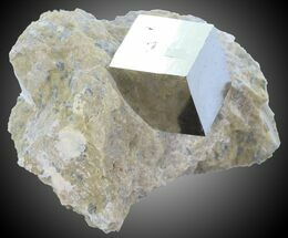 ".55"" Pyrite Cube on Matrix - Navajun, Spain For Sale, #30968"