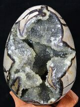 "5.8"" Septarian ""Dragon Egg"" Geode With Calcite Crystals For Sale, #33497"