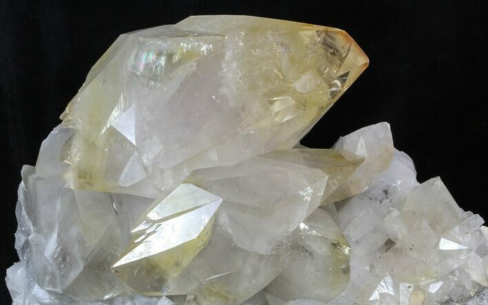 "13.5"" Giant Twinned Calcite Crystals - Elmwood Mine"