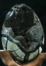 "4.4"" Septarian ""Dragon Egg"" Geode - Black Calcite Crystals For Sale, #33983"