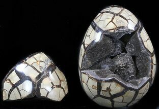 "7.3"" Septarian ""Dragon Egg"" Geode With Removable Section For Sale, #34694"