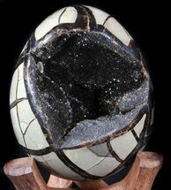 "Buy 4.5"" Septarian ""Dragon Egg"" Geode - Shiny Black Crystals - #34717"