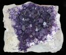 "15"" Purple, Cubic Fluorite Plate - Cave-in-Rock, Illinois - #35709-1"
