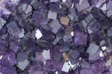 "15"" Purple, Cubic Fluorite Plate - Cave-in-Rock, Illinois - #35709-2"