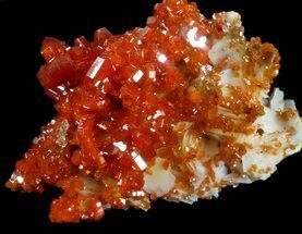"2.13"" Red Vanadinite Crystal Cluster - Morocco For Sale, #36977"