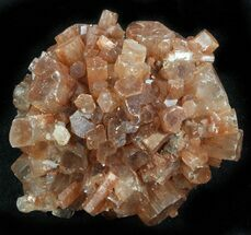 Aragonite - Fossils For Sale - #37338