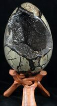 "Buy 8.2"" Septarian ""Dragon Egg"" Geode - Crystal Filled - #37366"
