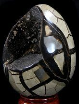 "4.9"" Septarian ""Dragon Egg"" Geode - Crystal Filled For Sale, #37445"
