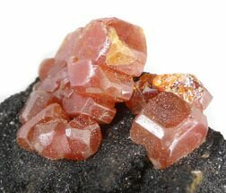 "1.7"" Red Vanadinite Crystals on Matrix - Morocco  For Sale, #38480"