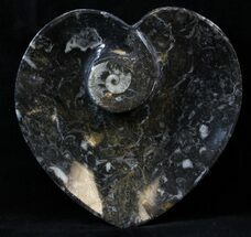 "4.5"" Heart Shaped Fossil Goniatite Dish For Sale, #39323"