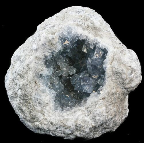 "8.3"" Celestite Geode- Top Quality"
