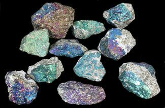 Buy Bulk Peacock Ore (Bornite with Chalcopyrite) - 10 Pack - #40708