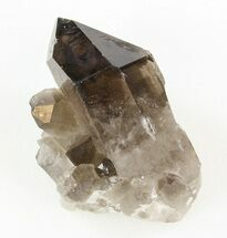 Quartz var Smoky - Fossils For Sale - #42045