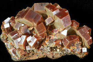 "2.4"" Vanadinite Cluster (Extra Large Crystals) - Morocco For Sale, #42182"