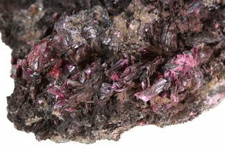 "3.4"" Magenta Erythrite Cystals on Matrix For Sale, #43208"