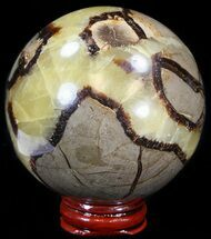 "Buy 3"" Polished Septarian Sphere - With Stand - #43855"