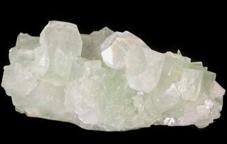"2.4"" Zoned Apophyllite Crystal Cluster - India For Sale, #44330"