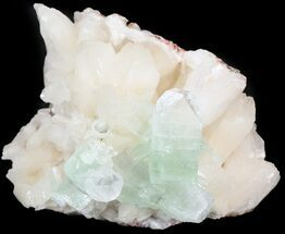 "Buy 3.1"" Zoned Apophyllite Crystals on Stilbite - India - #44350"