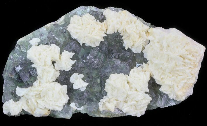 "6.9"" White Dolomite Flowers On Fluorite - China"