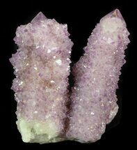 "Buy 2.2"" Cactus Quartz (Amethyst) Crystal - South Africa - #44788"