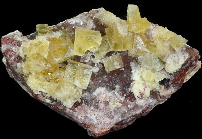 "2.2"" Lustrous, Yellow Cubic Fluorite Crystals - Morocco"