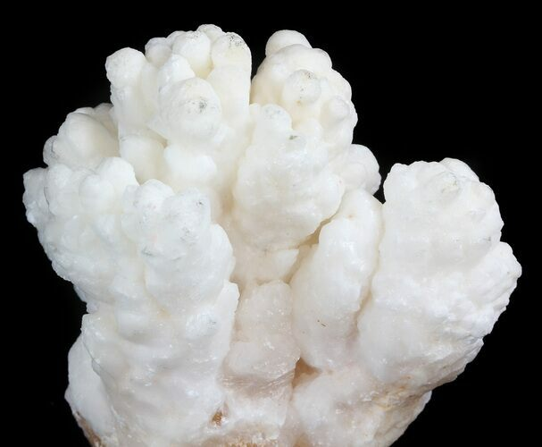 "4.0"" White Aragonite and Calcite Formation - Fluorescent"