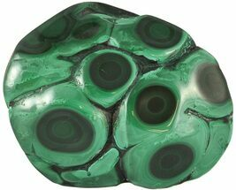 Malachite - Fossils For Sale - #45240