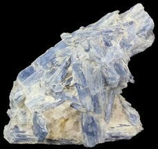 "Buy 2.7"" Kyanite Crystal Cluster with Quartz - Brazil - #44989"