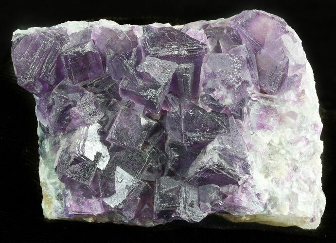 "3.2"" Dark Purple Cubic Fluorite Crystal Cluster - China"