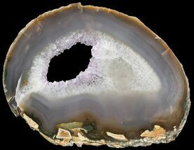 "6.8"" Polished Brazilian Agate Slice For Sale, #46058"