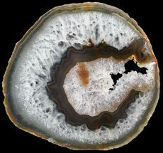 "Buy 6.0"" Polished Brazilian Agate Slice - #46084"