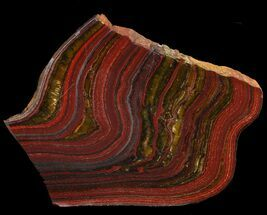 Tiger Iron Stromatolite - Fossils For Sale - #46614