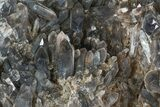 "Beautiful 11.6"" Smoky Quartz Cluster - Brazil  - #47194-3"