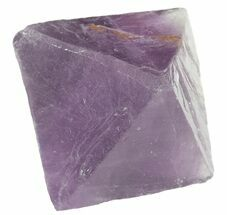 Fluorite - Fossils For Sale - #48441
