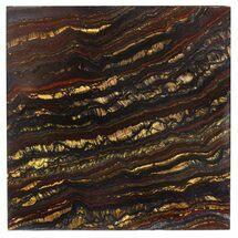 "Buy 4"" Tiger Iron Stromatolite ""Shower Tile"" - 2.7 Billion Years Old - #48781"