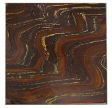 "4"" Tiger Iron Stromatolite ""Shower Tile"" - 2.7 Billion Years Old For Sale, #48806"