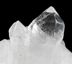"Buy 2.6"" Clear Quartz Crystal Cluster - Brazil - #48622"