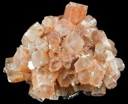 Aragonite - Fossils For Sale - #49305