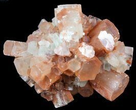 Aragonite - Fossils For Sale - #49320