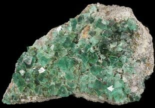 "Buy Large, 8.2"" Fluorite & Galena Plate -  Rogerley Mine (Clearance Price) - #32398"