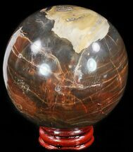 "Buy 3.1"" Colorful Petrified Wood Sphere - #49750"