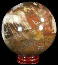 "Buy 3.4"" Colorful Petrified Wood Sphere - #49777"