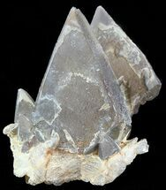 "Buy 2.0"" Dogtooth Calcite Crystal Cluster - Morocco - #50191"