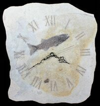 "14"" Tall Clock With Mioplosus Fish Fossil - Wyoming For Sale, #50918"