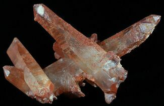 "2.4"" Natural Red Quartz Crystals - Morocco For Sale, #51545"
