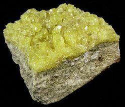 "2.8"" Lemon-Yellow Sulfur Crystals - Bolivia For Sale, #51584"