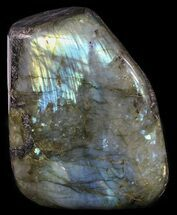 "Buy 3.6"" Tall, Flashy Polished Free Form Labradorite - #54913"